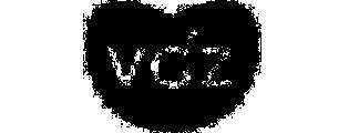 logo vgz verzekeringen grijs
